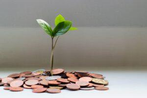 Social Entrepreneurship Kredit